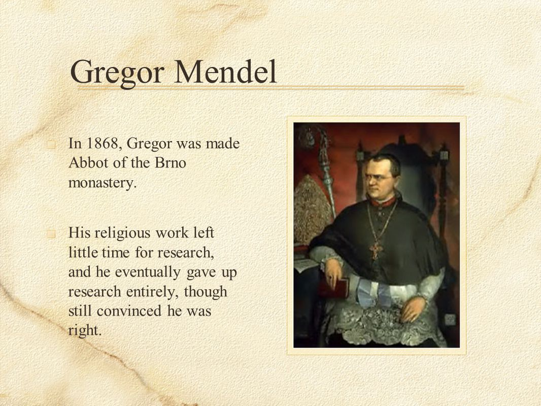 Gregor Mendel In 1868, Gregor was made Abbot of the Brno monastery.