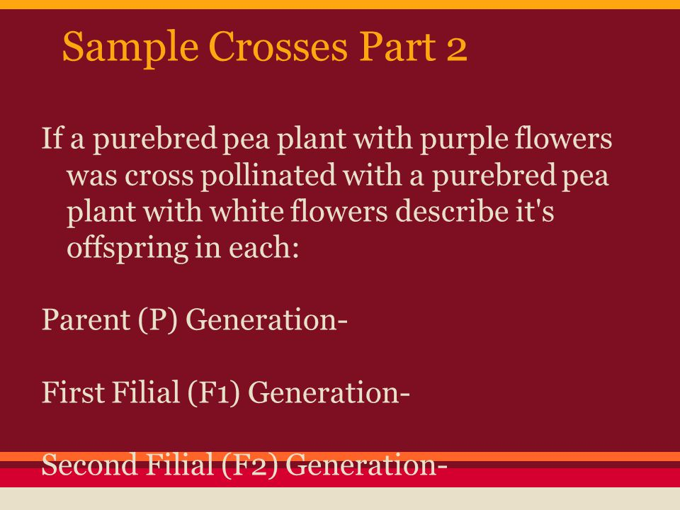 Sample Crosses Part 2