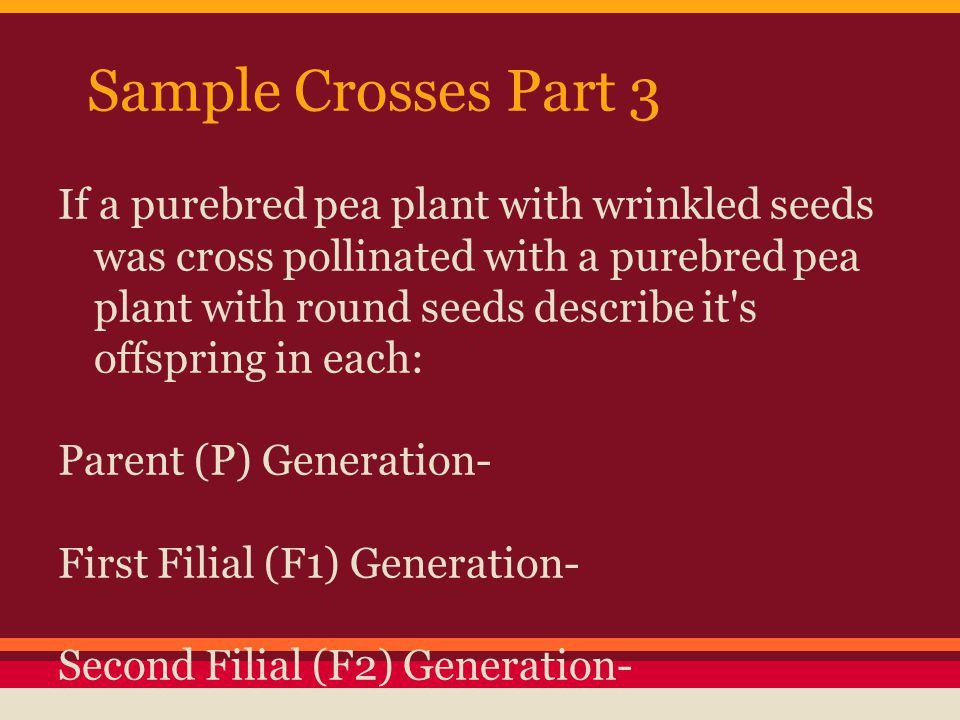 Sample Crosses Part 3