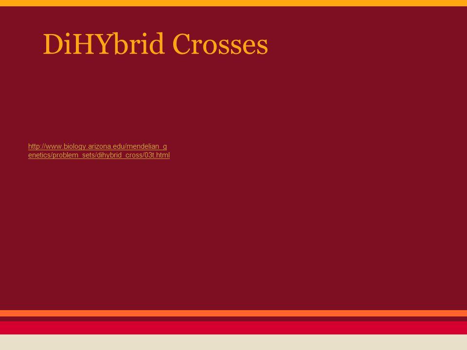 DiHYbrid Crosses http://www.biology.arizona.edu/mendelian_genetics/problem_sets/dihybrid_cross/03t.html.