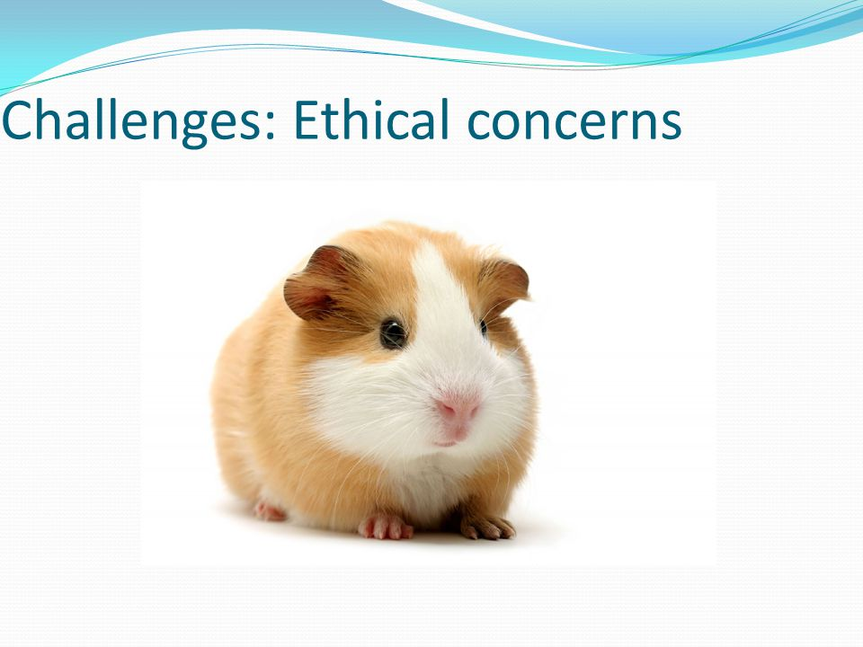 Challenges: Ethical concerns