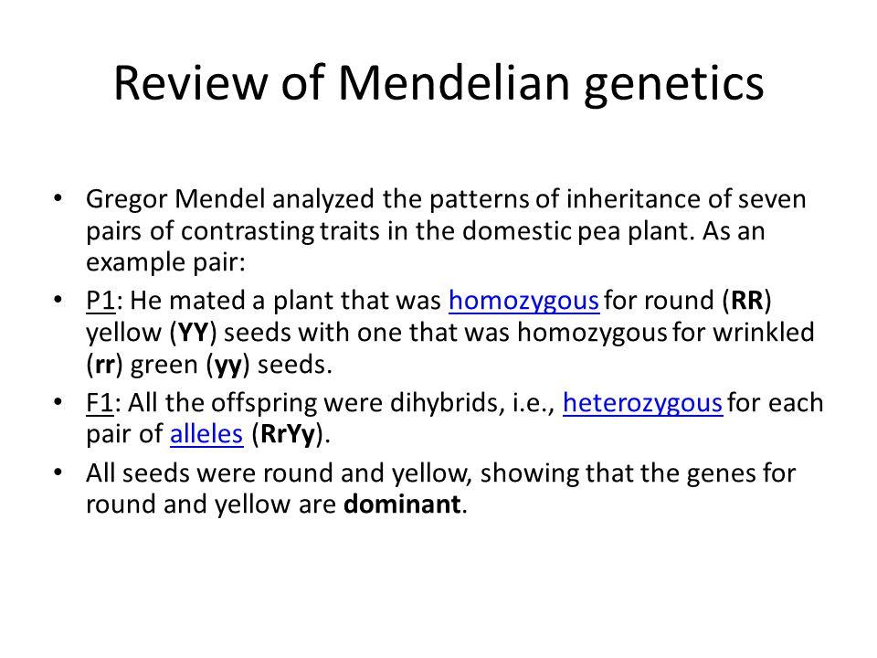 Review of Mendelian genetics
