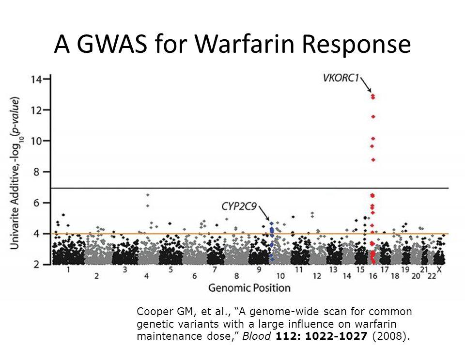 A GWAS for Warfarin Response