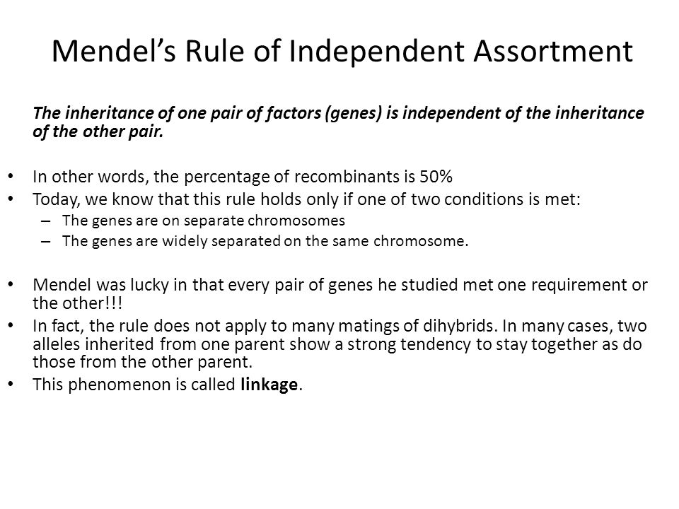 Mendel's Rule of Independent Assortment