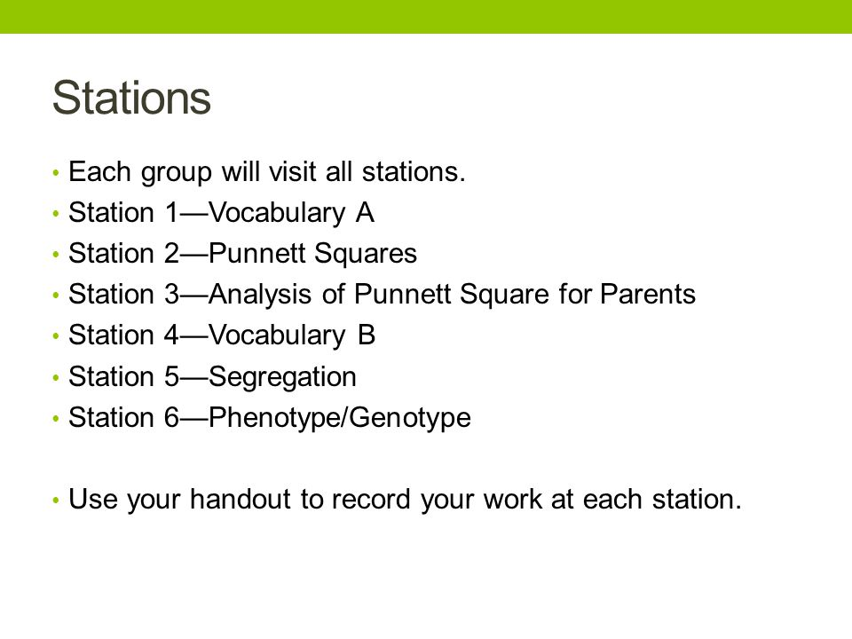 Stations Each group will visit all stations. Station 1—Vocabulary A