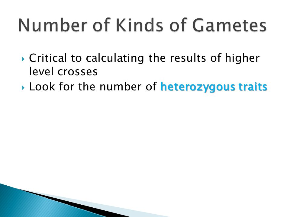 Number of Kinds of Gametes