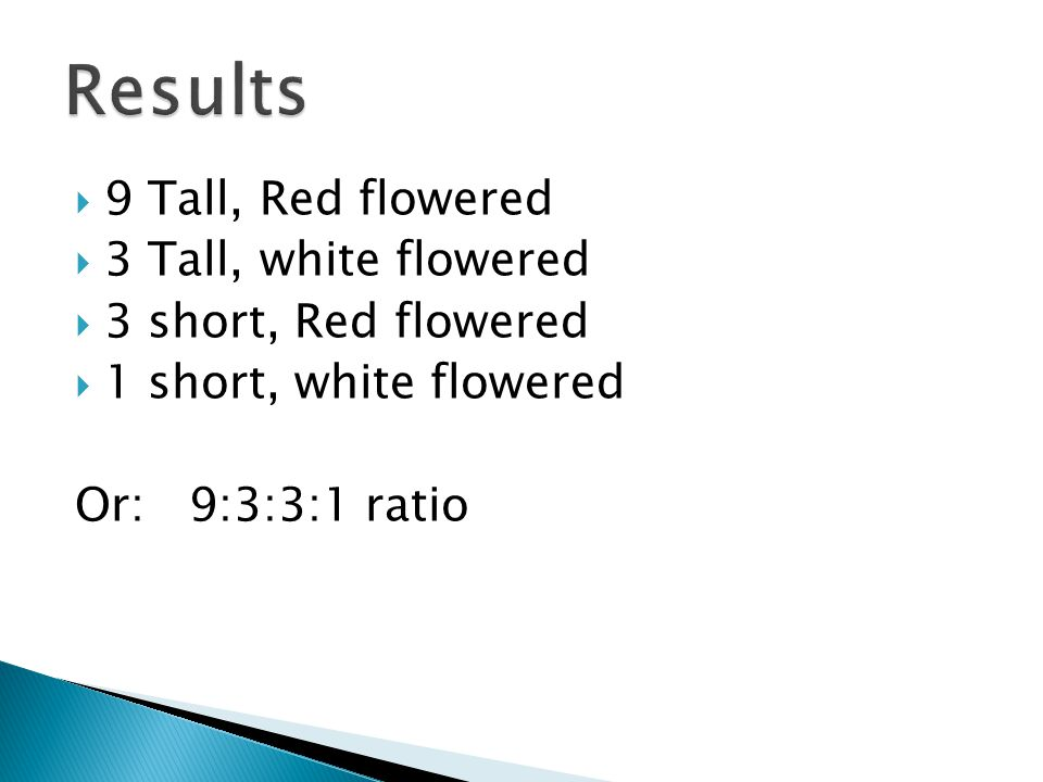 Results 9 Tall, Red flowered 3 Tall, white flowered