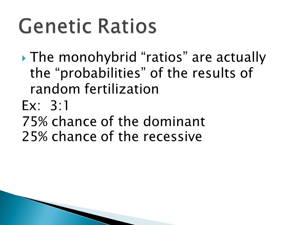 Genetic Ratios The monohybrid ratios are actually the probabilities of the results of random fertilization.