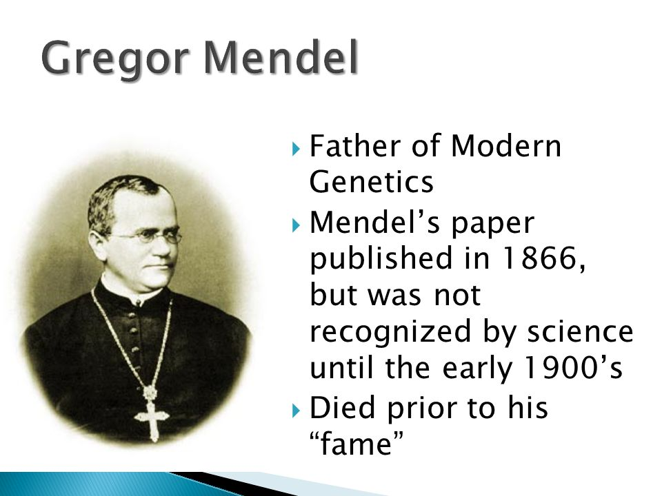 Gregor Mendel Father of Modern Genetics