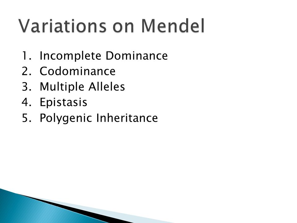 Variations on Mendel 1. Incomplete Dominance 2. Codominance 3.