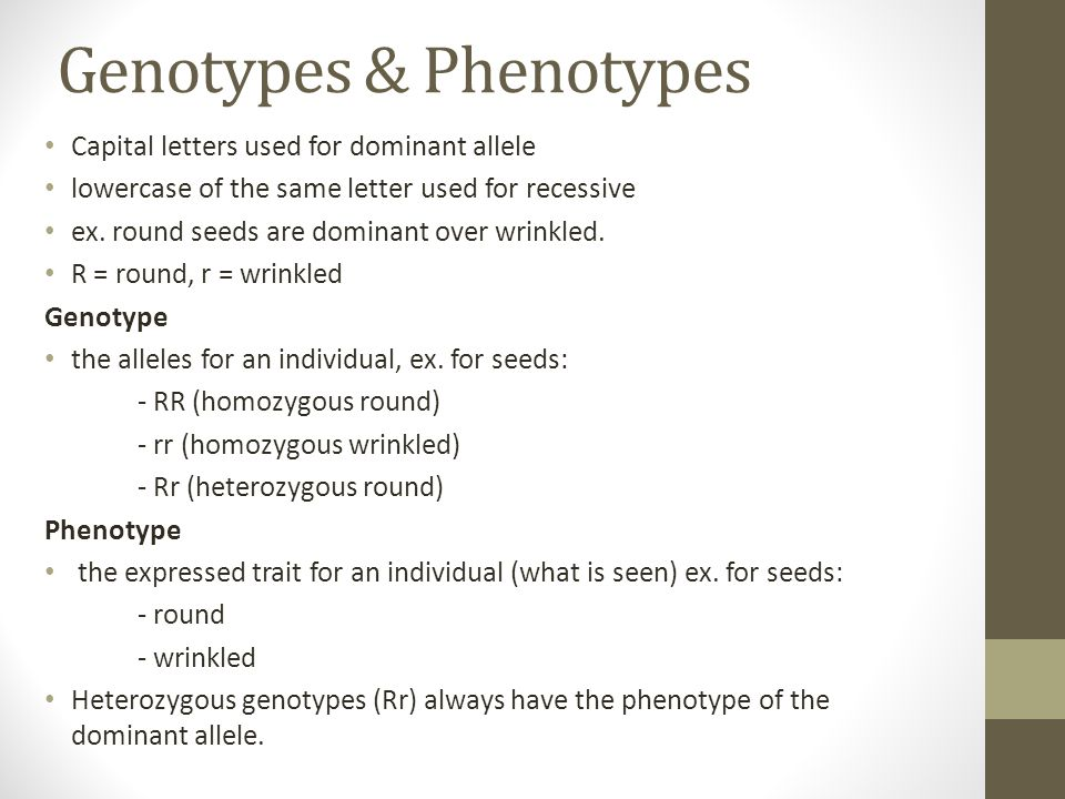 Genotypes & Phenotypes