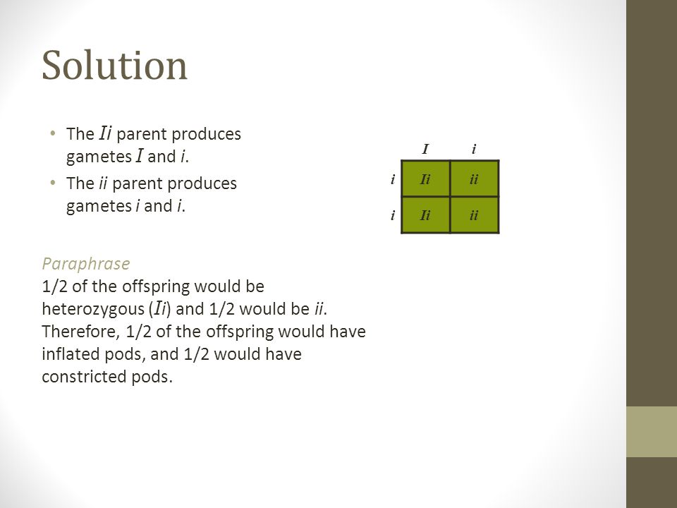 Solution The Ii parent produces gametes I and i.