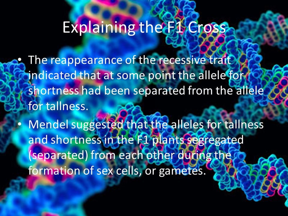 Explaining the F1 Cross