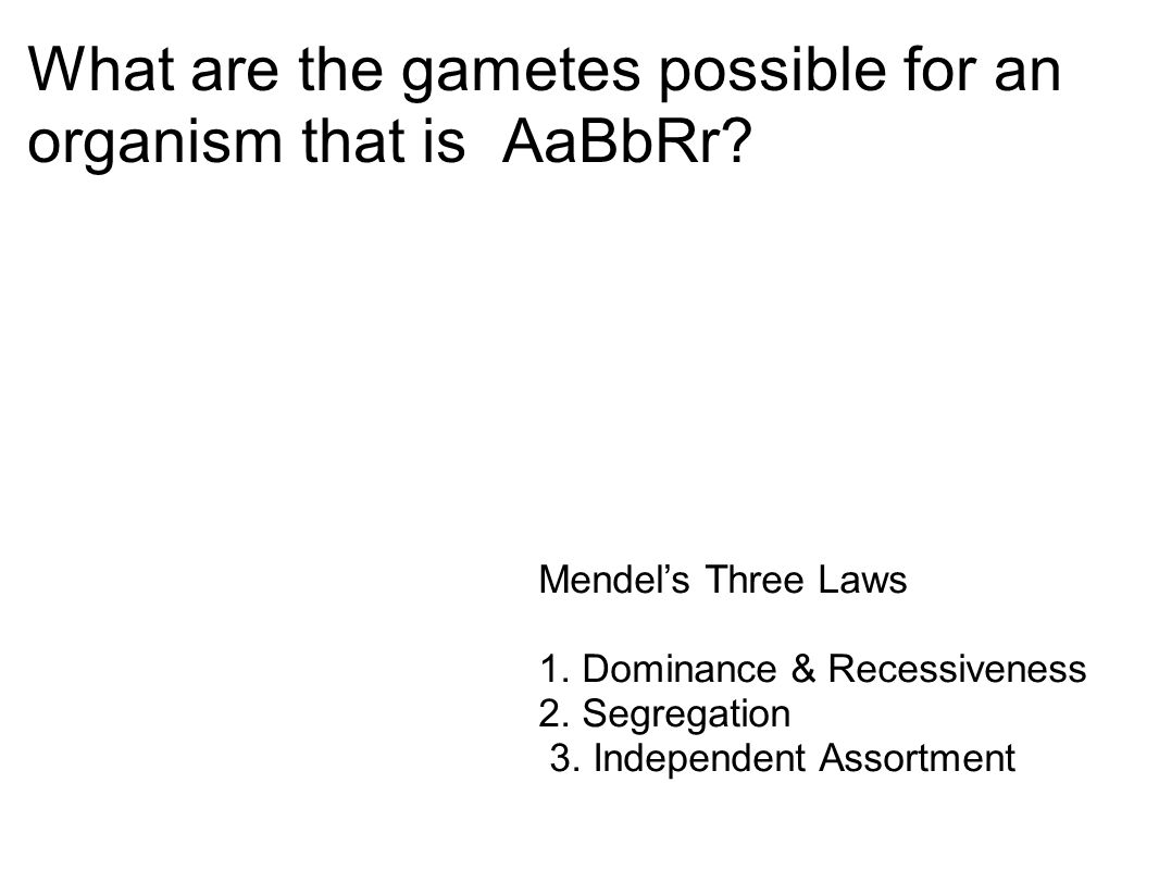 What are the gametes possible for an organism that is AaBbRr
