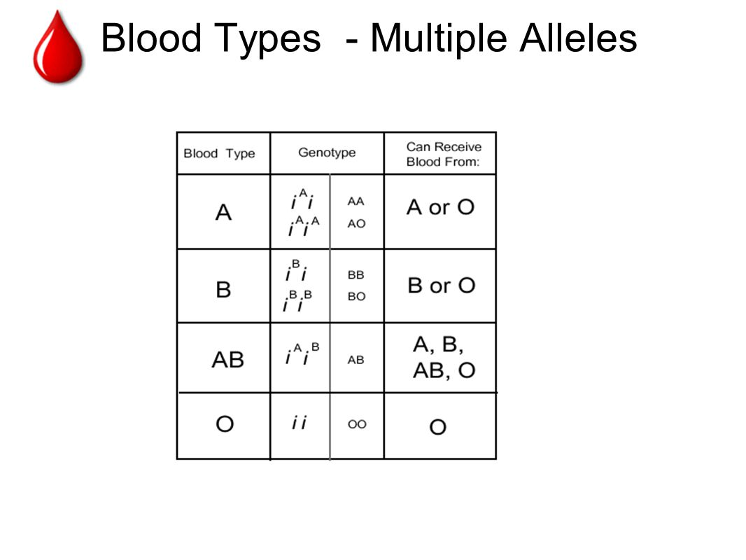 Blood Types - Multiple Alleles