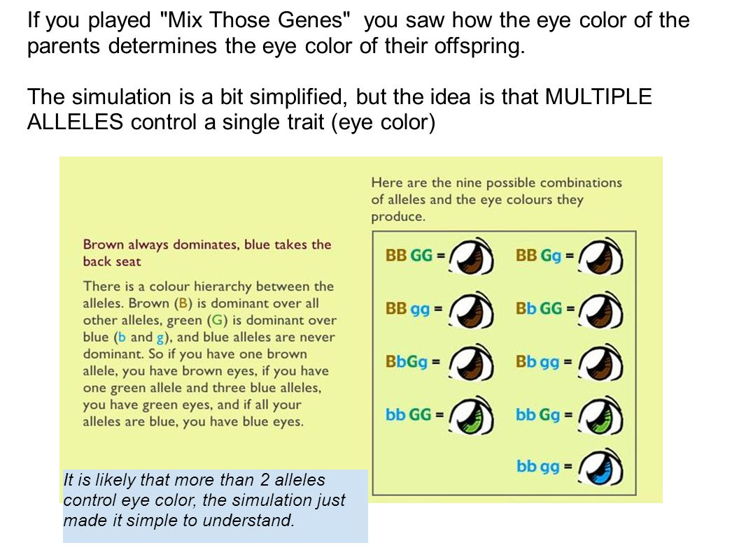 If you played Mix Those Genes you saw how the eye color of the parents determines the eye color of their offspring.
