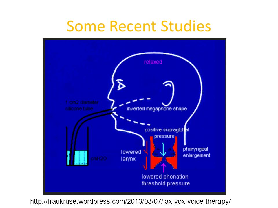 Some Recent Studies http://fraukruse.wordpress.com/2013/03/07/lax-vox-voice-therapy/