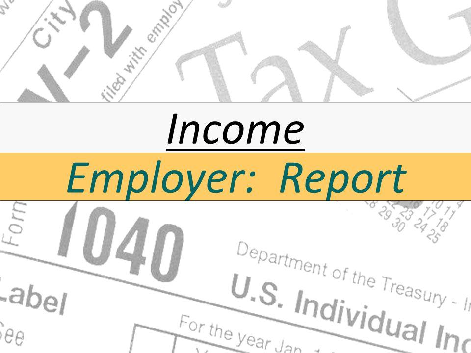 Income Employer: Report