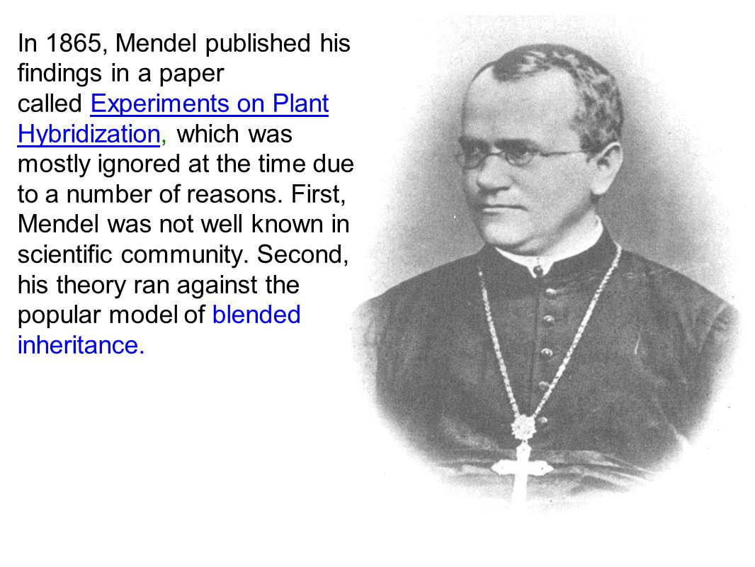 In 1865, Mendel published his findings in a paper called Experiments on Plant Hybridization, which was mostly ignored at the time due to a number of reasons.