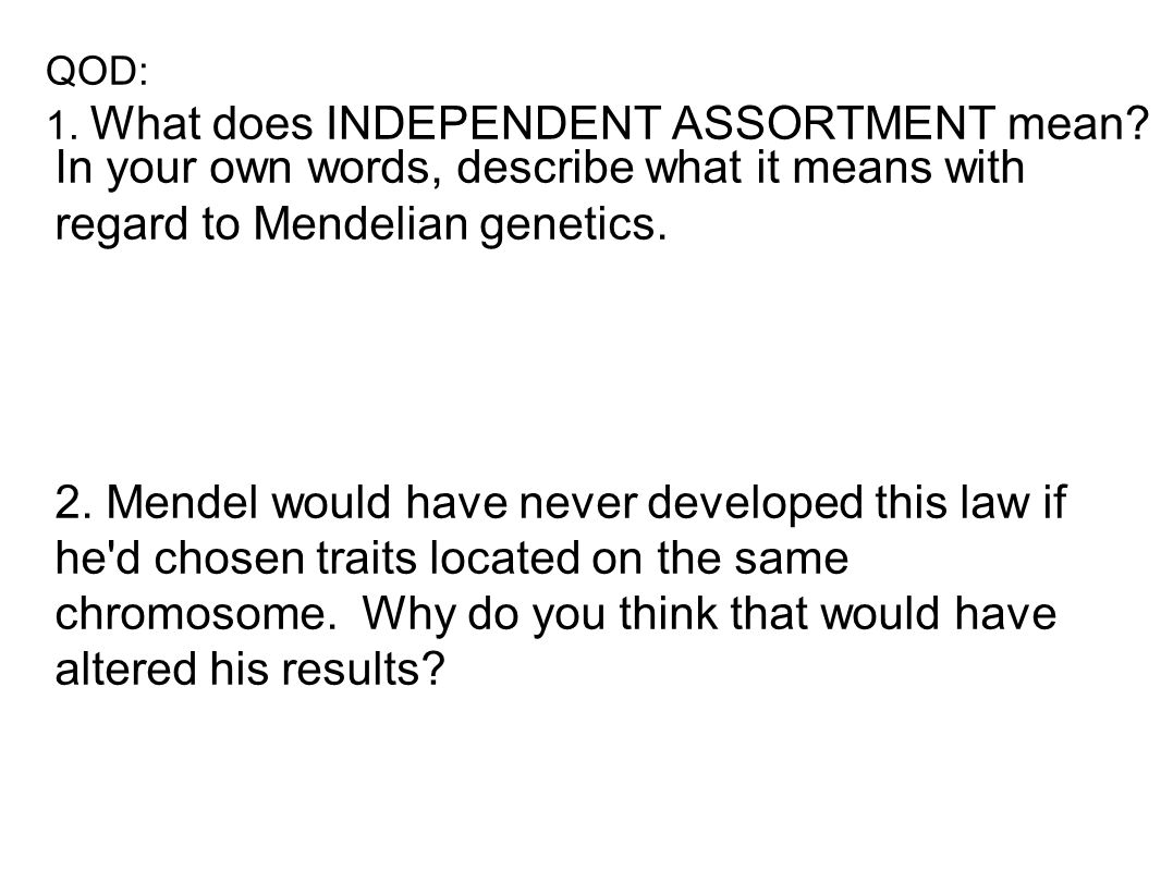 QOD: 1. What does INDEPENDENT ASSORTMENT mean