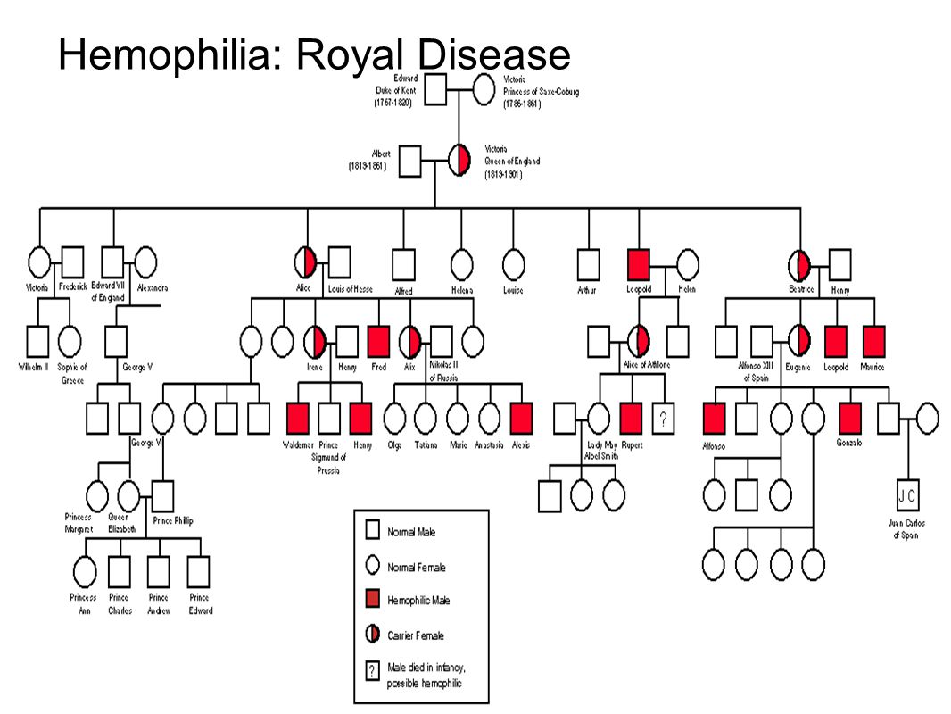 Hemophilia: Royal Disease