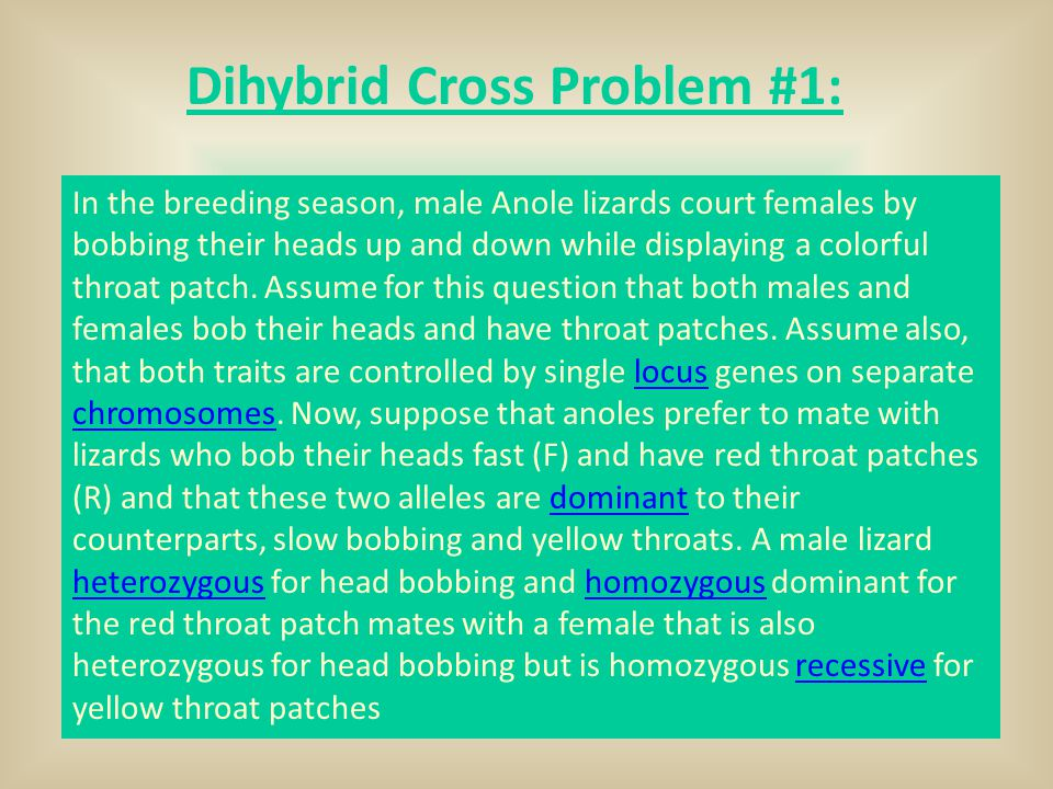 Dihybrid Cross Problem #1: