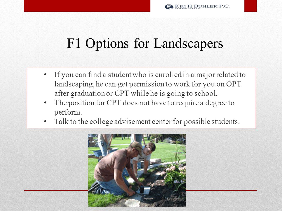 F1 Options for Landscapers