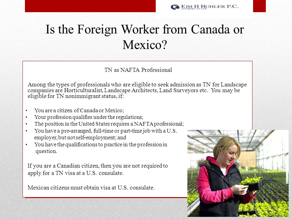 Is the Foreign Worker from Canada or Mexico