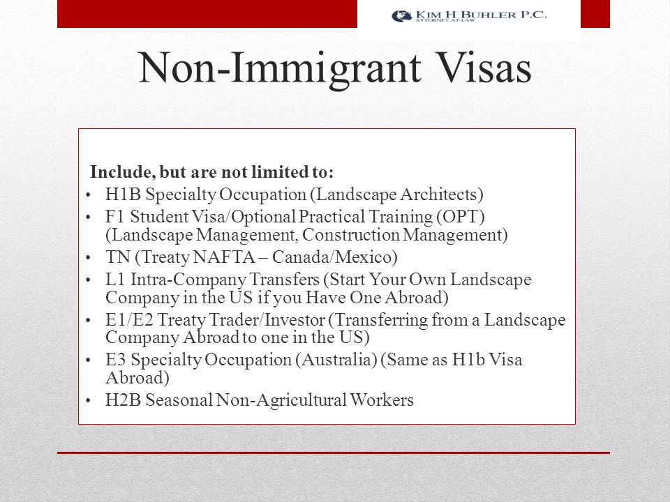Non-Immigrant Visas Include, but are not limited to: