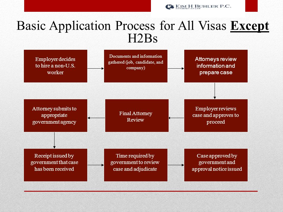 Basic Application Process for All Visas Except H2Bs