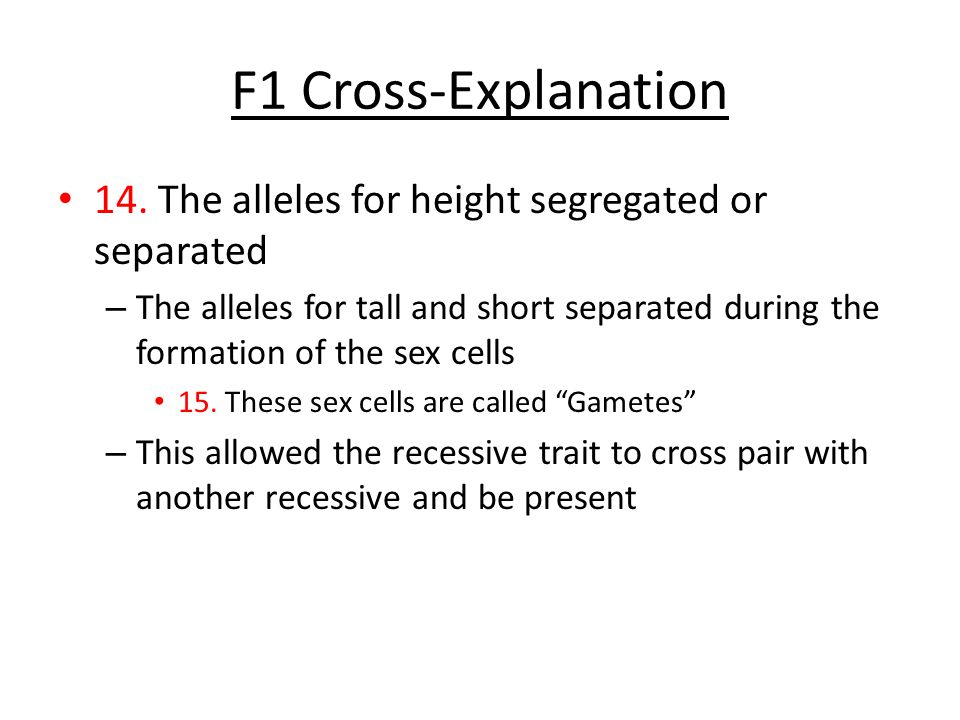 F1 Cross-Explanation 14. The alleles for height segregated or separated.