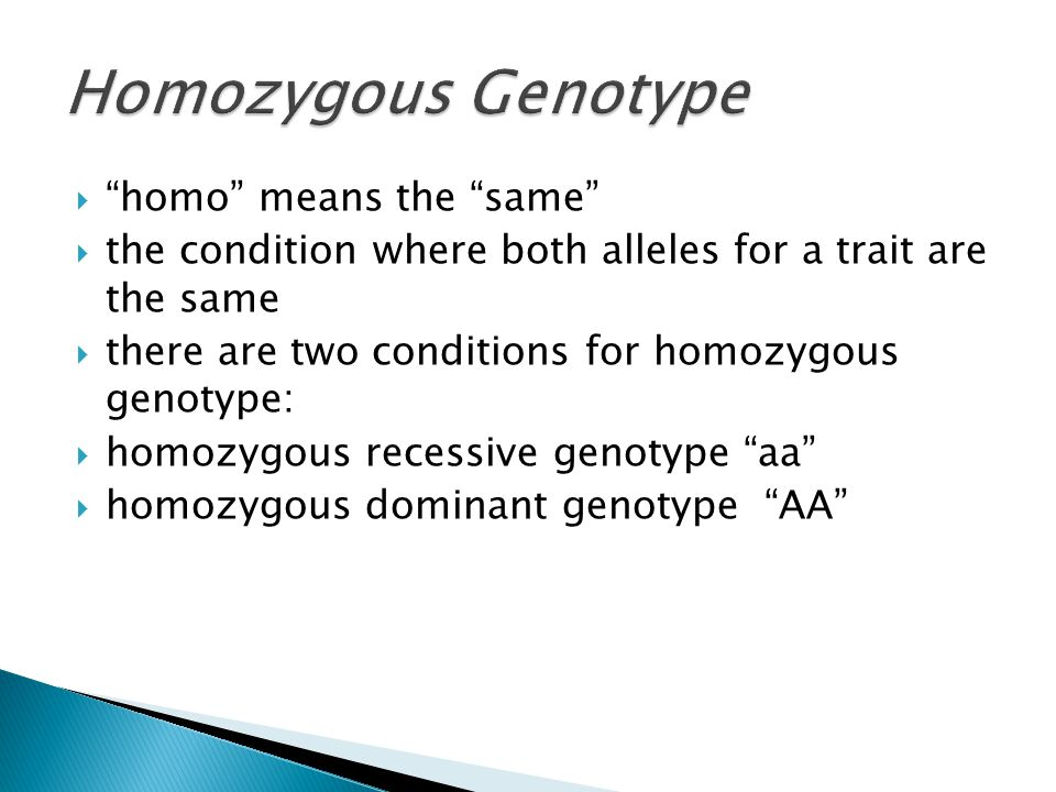 Homozygous Genotype homo means the same