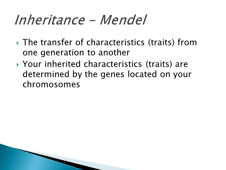 Inheritance - Mendel The transfer of characteristics (traits) from one generation to another.