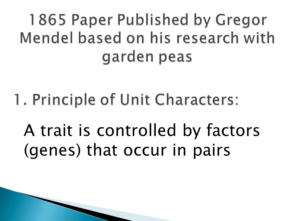A trait is controlled by factors (genes) that occur in pairs