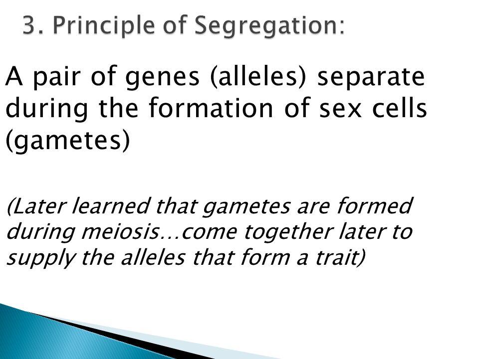 3. Principle of Segregation: