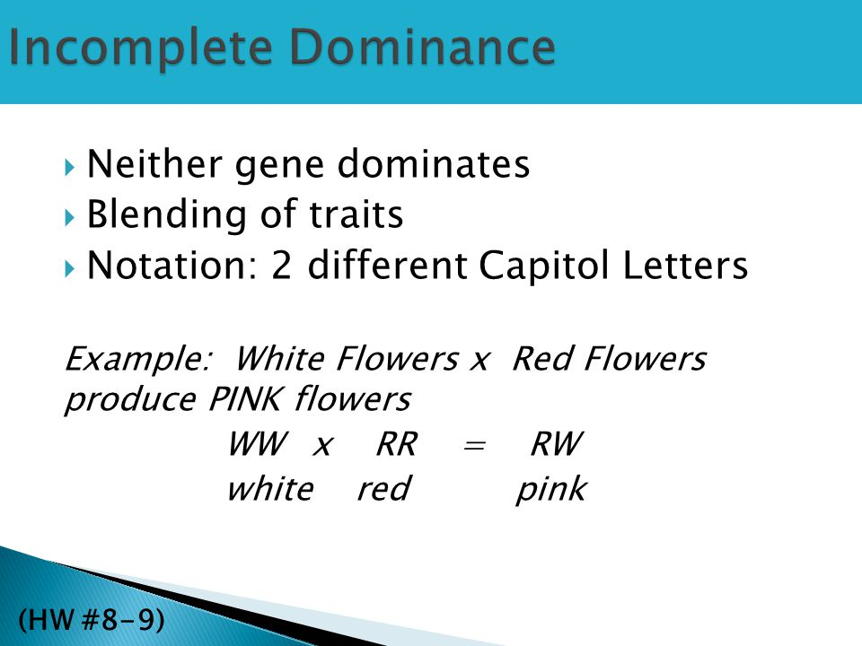 Incomplete Dominance Neither gene dominates Blending of traits