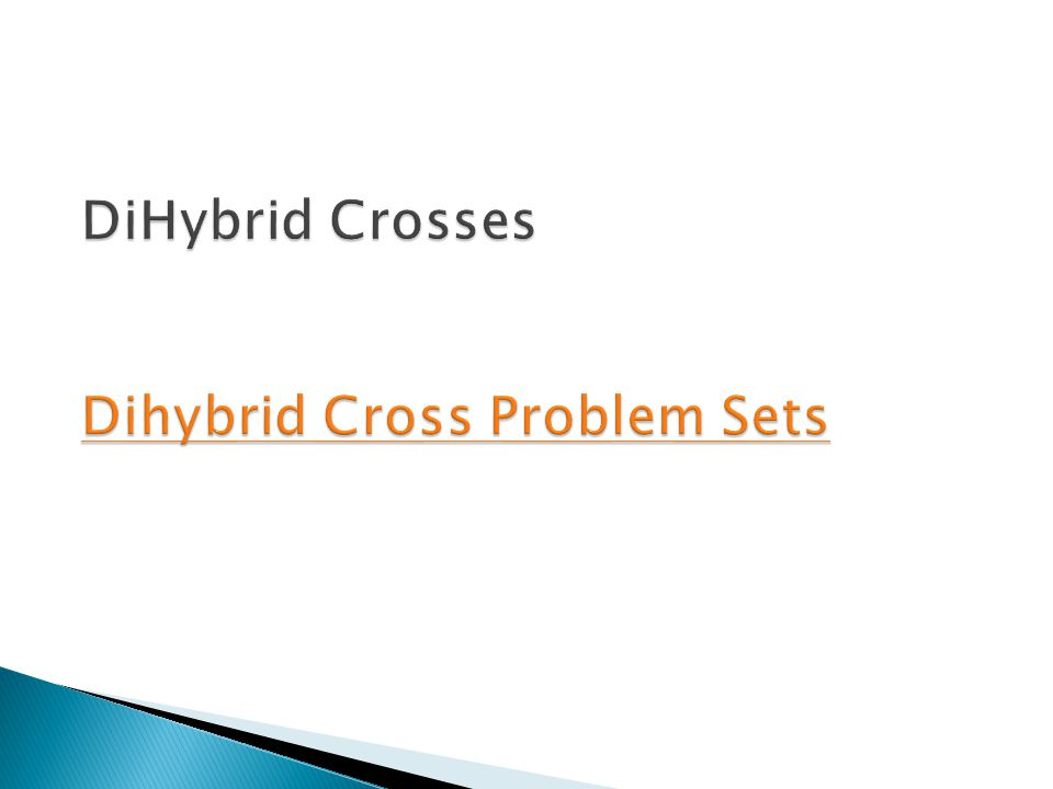 DiHybrid Crosses Dihybrid Cross Problem Sets