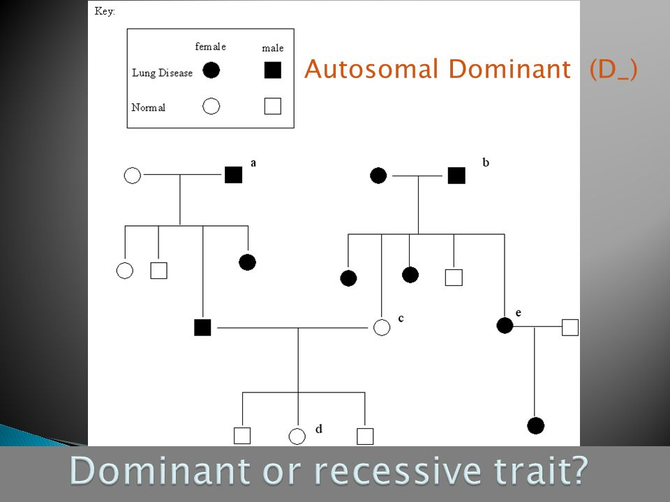 Autosomal Dominant (D_)