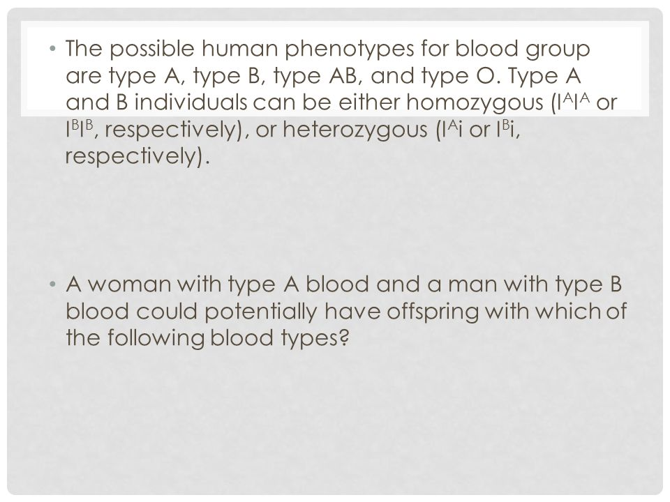 The possible human phenotypes for blood group are type A, type B, type AB, and type O. Type A and B individuals can be either homozygous (IAIA or IBIB, respectively), or heterozygous (IAi or IBi, respectively).