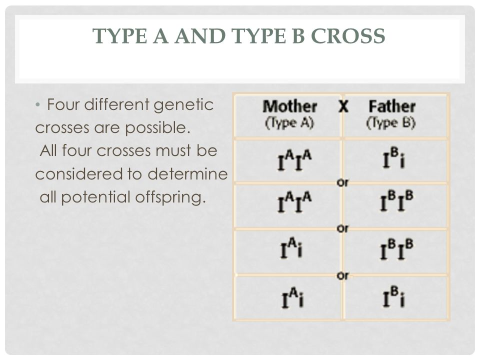 Type A and Type B cross Four different genetic crosses are possible.