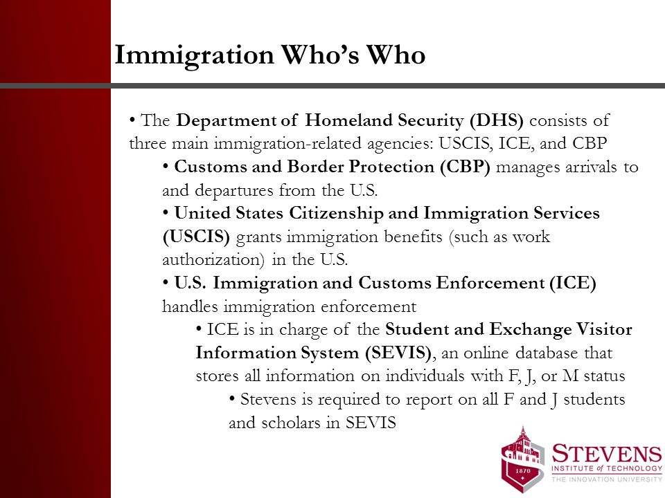 Immigration Who's Who The Department of Homeland Security (DHS) consists of three main immigration-related agencies: USCIS, ICE, and CBP.