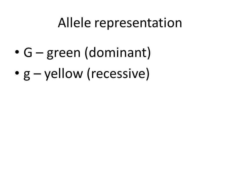 Allele representation