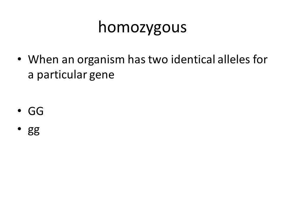 homozygous When an organism has two identical alleles for a particular gene GG gg