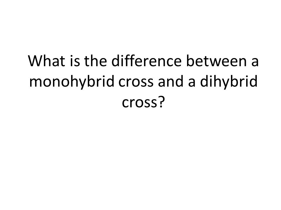 What is the difference between a monohybrid cross and a dihybrid cross