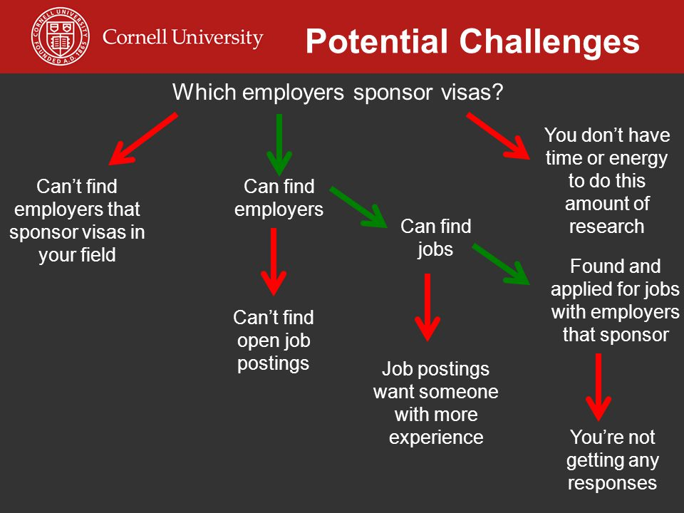Potential Challenges Which employers sponsor visas