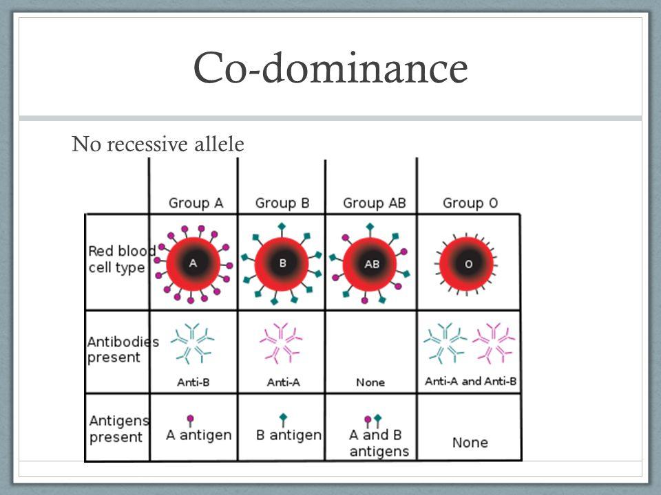 Co-dominance No recessive allele