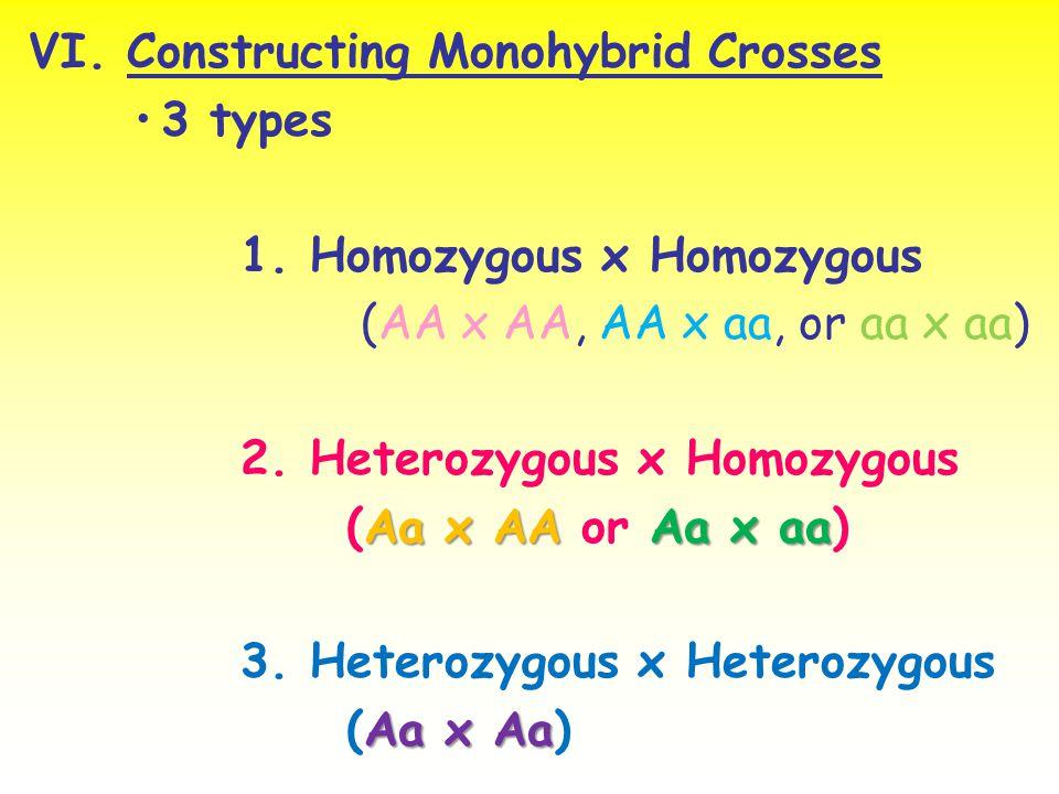 VI. Constructing Monohybrid Crosses