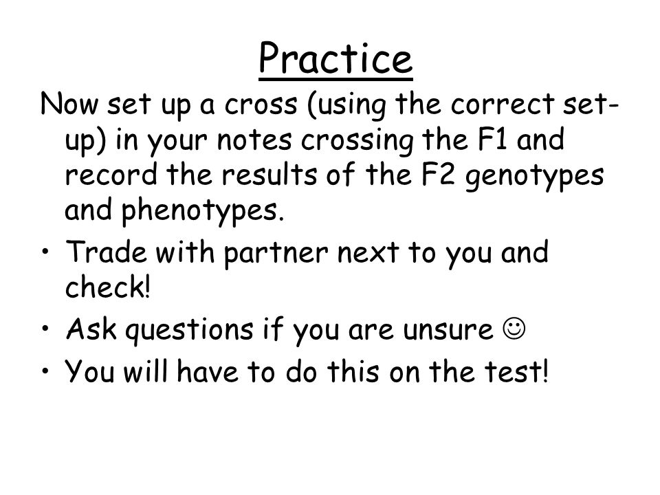 Practice Now set up a cross (using the correct set-up) in your notes crossing the F1 and record the results of the F2 genotypes and phenotypes.