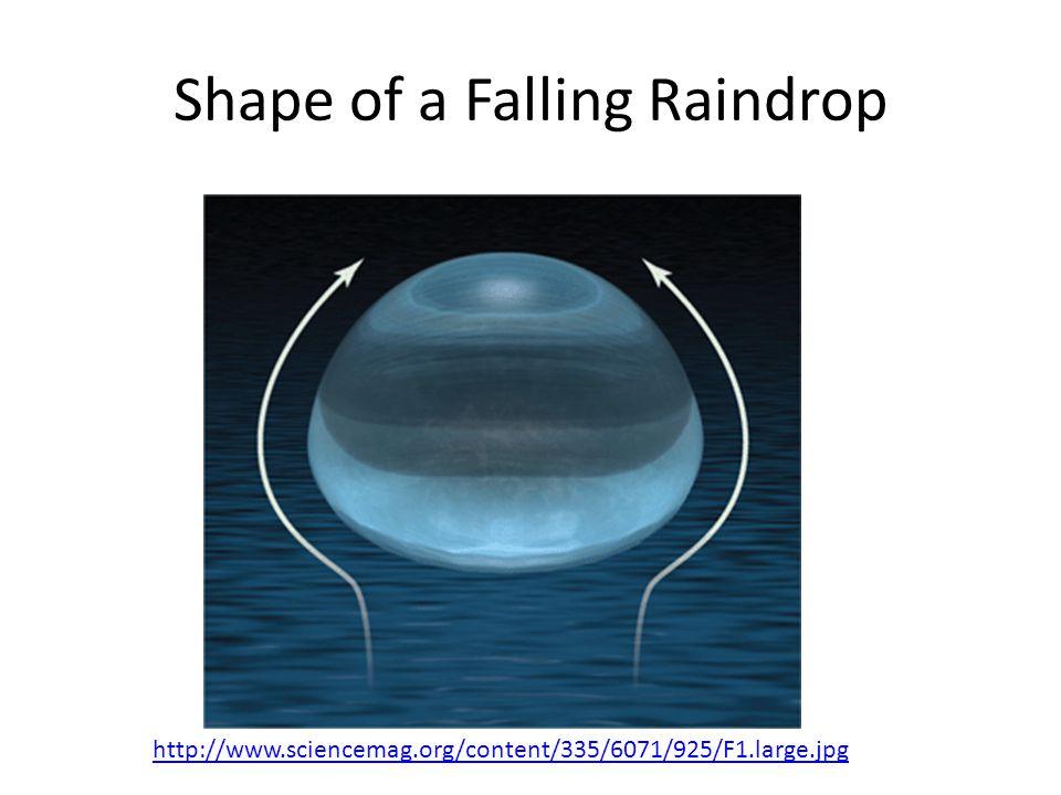 Shape of a Falling Raindrop