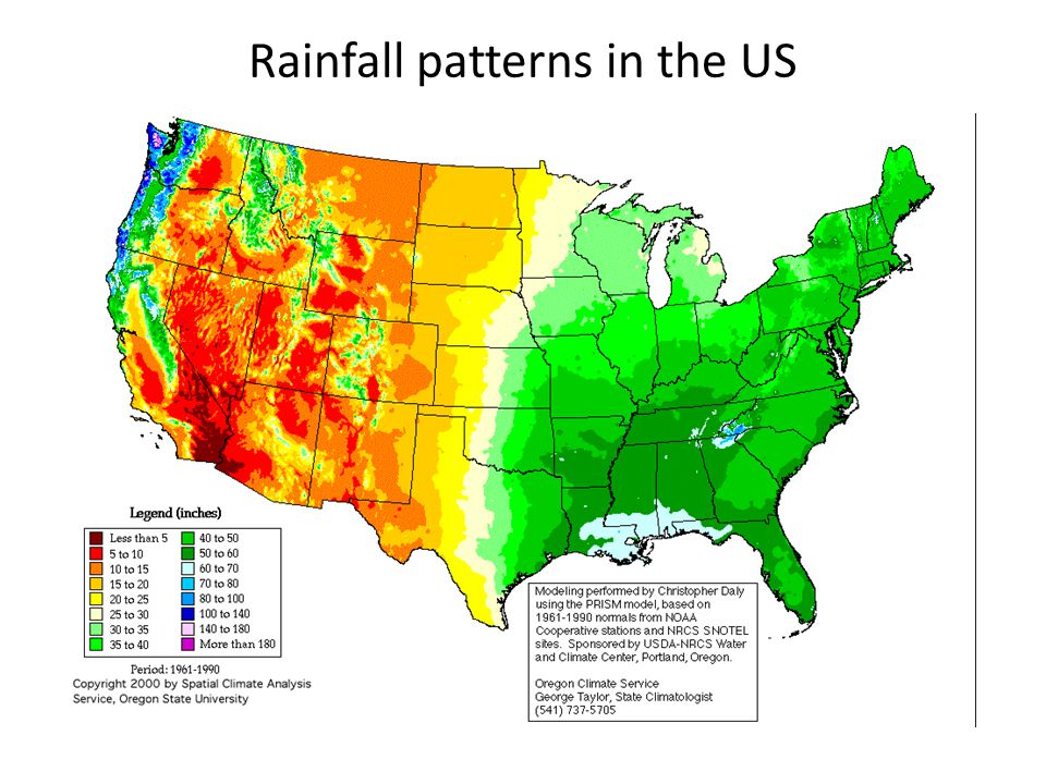 Rainfall patterns in the US
